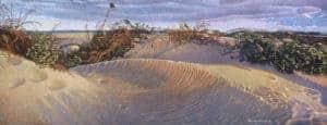 Last Light on the Dunes