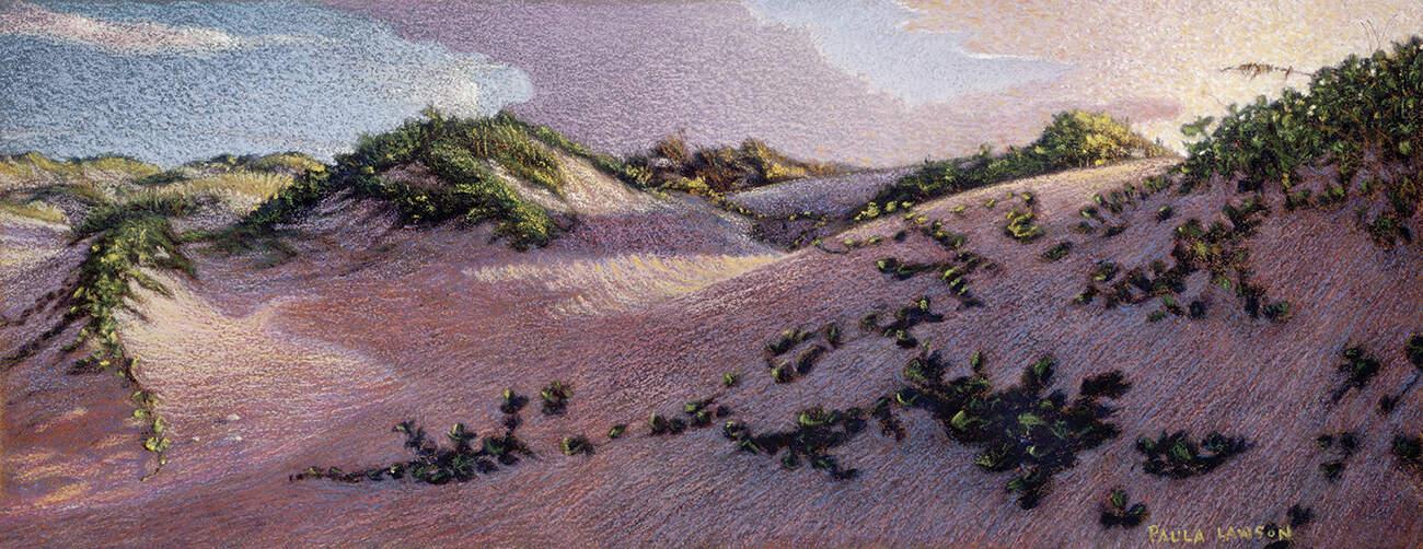 Padre Island Sand Dunes